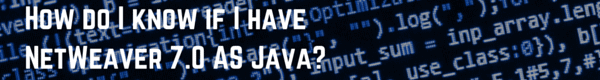 How do I know if I have NetWeaver 7.0 AS Java
