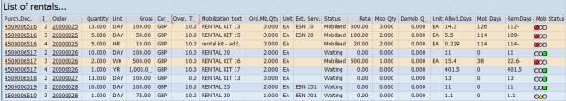 SAP Blog Rentals & Returns Screen Grab (List of Rentals)